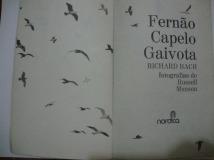 ferno-capelo-gaivota-richard