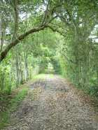 caminho