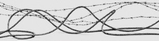 corda