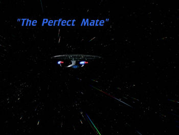 5x21_the_perfect_mate_title_card