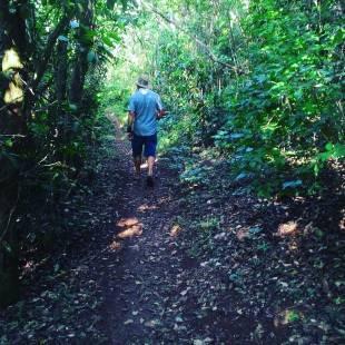 nei trilha